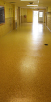 Interior Flooring In A Commercial Building By Kelly Designs In Concrete